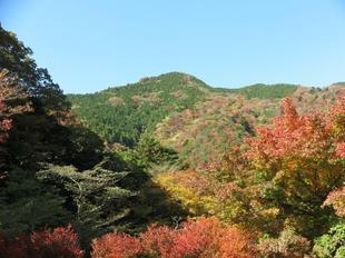 11-12-tsugawa5.jpg