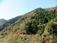 11-12-tsugawa6.jpg