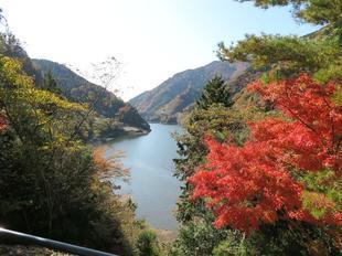 11-12-tsugawa8.jpg