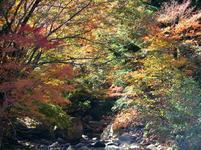 11-12-tsugawa9.jpg