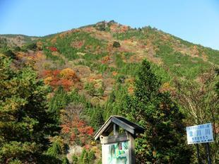 11-17tsugawa15.jpg