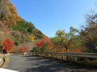 11-17tsugawa24.jpg