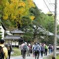 出雲街道を歩こう会「坪井宿」