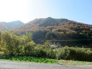 sarayamachikunoaki12.jpg