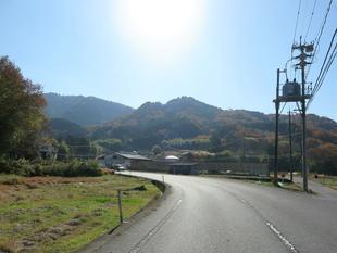 sarayamachikunoaki37.jpg