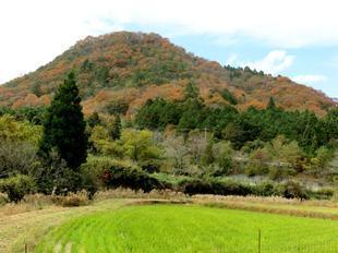 sarayamachikunoaki40.jpg