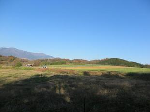 cyabatake9.jpg