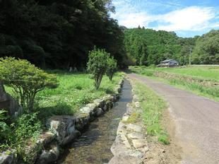 fuefukiken7.jpg
