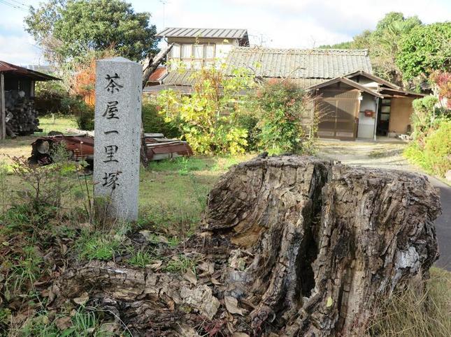 ichirizuka1.jpg