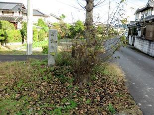 ichirizuka3.jpg