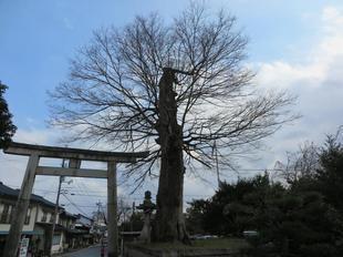 nakayama2021hatumoude1.jpg