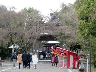 nakayama2021hatumoude13.jpg