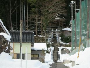 yuzu-2021-kanao38.jpg