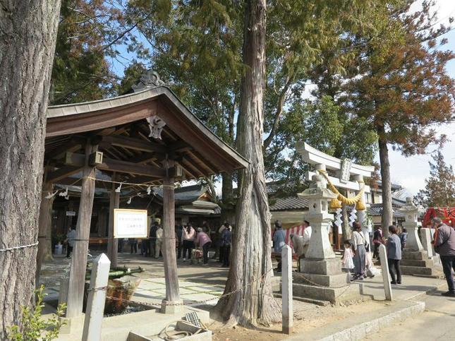 fukuriki2021-19.jpg