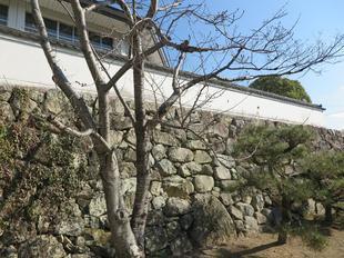 houkoku-onegoya8.jpg