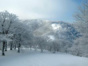 kenashiyama-fuyu5.jpg