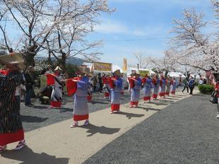 2021-3-27sakura-open26.jpg