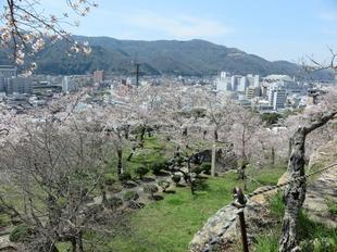 2021-3-27sakura-open38.jpg