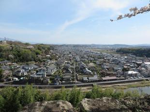 2021-3-27sakura-open40.jpg