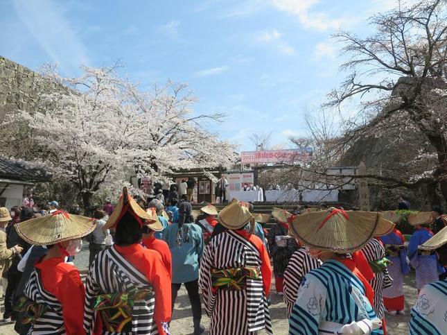 2021-3-27sakura-open8.jpg
