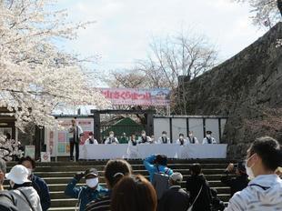 2021-3-27sakura-open9.jpg