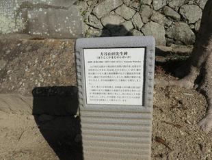 houkokuhi-ga2.jpg