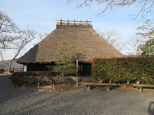 shiroyama-2-25.jpg