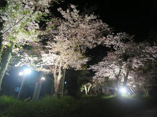 shirakami2021-11.jpg