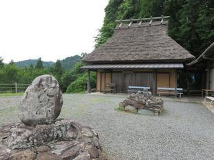 2021-6-15daigozakura17.jpg
