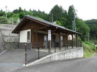 2021-6-15daigozakura3.jpg