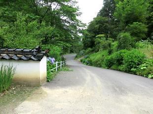 2021-6-15kiyamaji15.jpg
