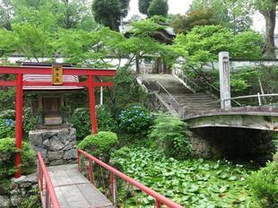 2021-6-15kiyamaji8.jpg