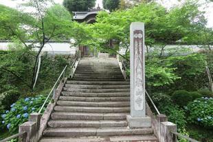 2021-6-19kiyama_daishi01.jpg