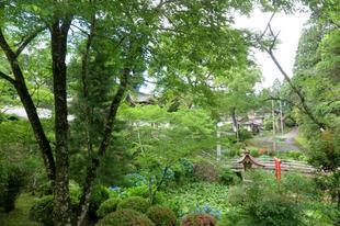 2021-6-19kiyama_daishi1.jpg