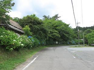2021-6-fumonji1.jpg