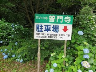 2021-6-fumonji19.jpg