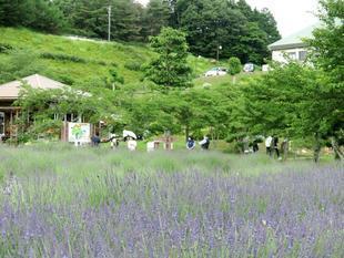 6-27makibanoyakata24.jpg
