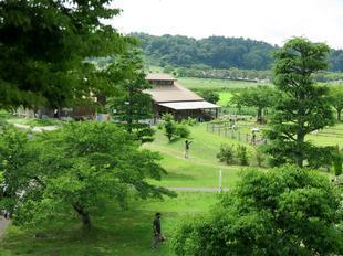 6-27makibanoyakata28.jpg
