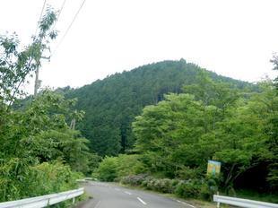 wood_ajisai19.jpg