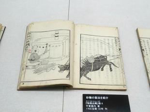 2021-8yougaku13.jpg