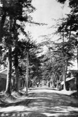 matsubara.jpg