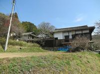 2021-3-24yabuki44.jpg