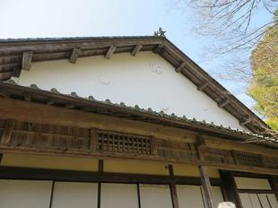 2021-3-24yabuki5.jpg