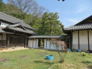 2021-3-24yabuki50.jpg