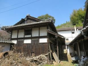 2021-3-24yabuki51.jpg