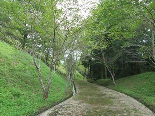 2021-9-4otomeyama18.jpg
