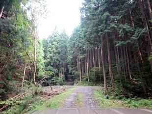 2021-9haha_yashikiato17.jpg