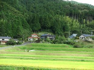 yashikizentai.jpg