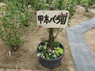 koumotobaraaki53.jpg