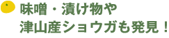 201509sunhill_title02.png